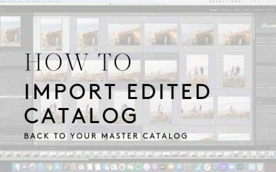 How to Import an Edited Catalogue Into a Master Catalogue